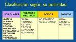 Clasificación de los Aminoácidos Según su Polaridad