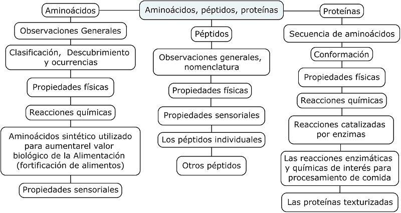 Diferencias entre Aminoácidos, Péptidos y Proteínas