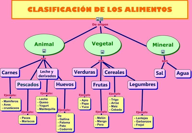 Ejemplos de Clasificación de los alimentos según su origen
