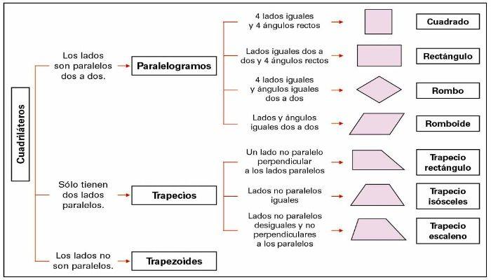 Imagen de la Clasificación de cuadriláteros