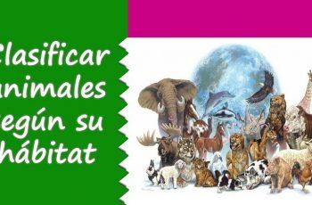 La clasificación de los animales según su hábitat