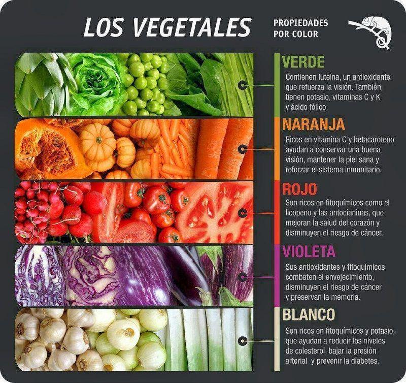 Vegetal animal humana alimentacion y